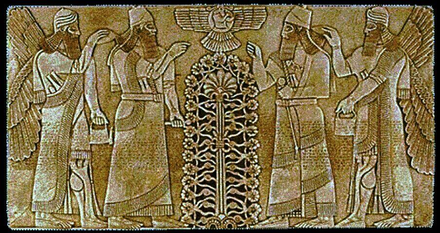 Anunnaki / Sumerians and the Tree of Life and Creation The