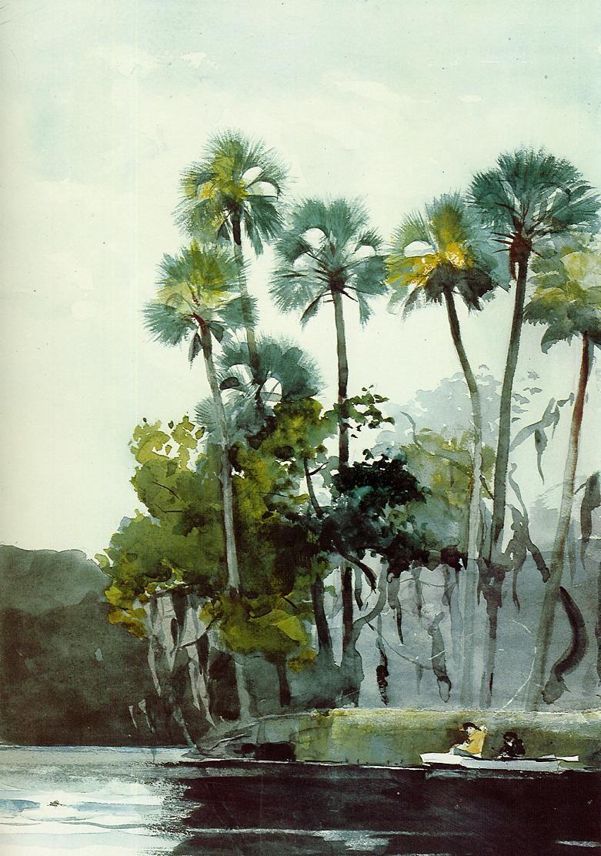 Watercolor artist magazine palm coast fl - Winslow Homer American Painter Homosassa River 1904 Watercolor Brooklyn Museum New York Ny United States
