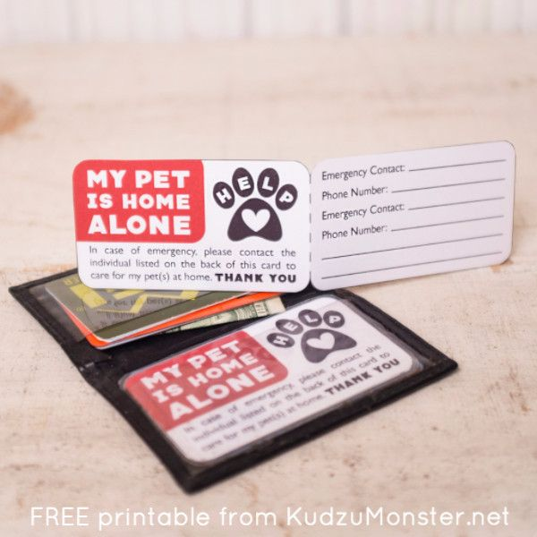 Free Printable Pet Emergency Contact Card Pet Emergency Pet Care Printables Pet Emergency Card