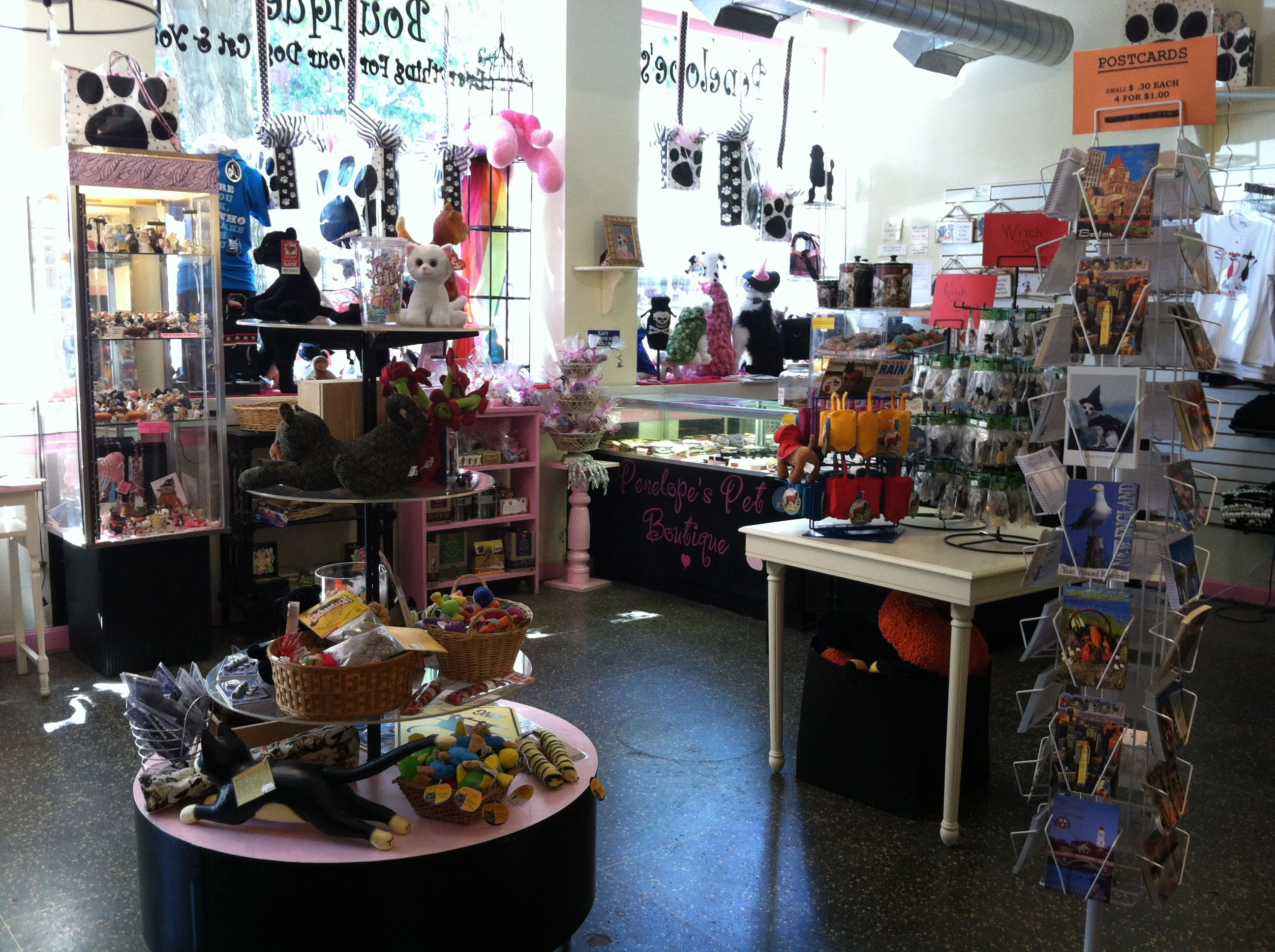 Penelopes New Store Layout Pet Store Boutique Dogs Cats Pet Store Pet Store Ideas Dog Boutique Ideas