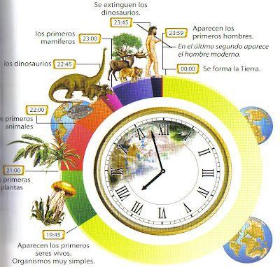 La Evolución Son Todos Los Cambios Que Han Originado La Diversidad De Los Seres Vivientes En La Origen De La Tierra Ciencias De La Tierra Evolucion De La Vida