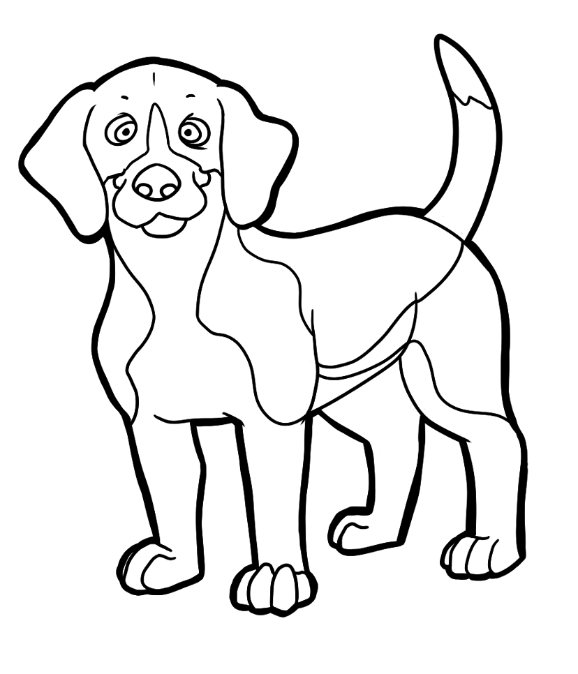 Shiloh | Coloring Pages | Dog coloring page, Beagle dog, Beagle
