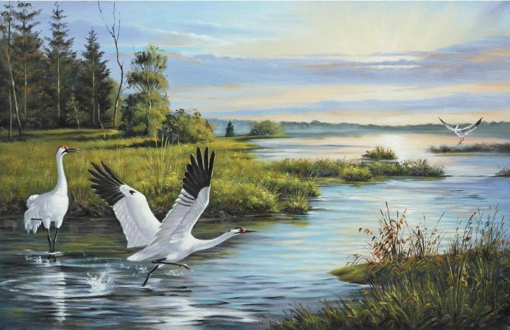 Картинка журавли над рекой