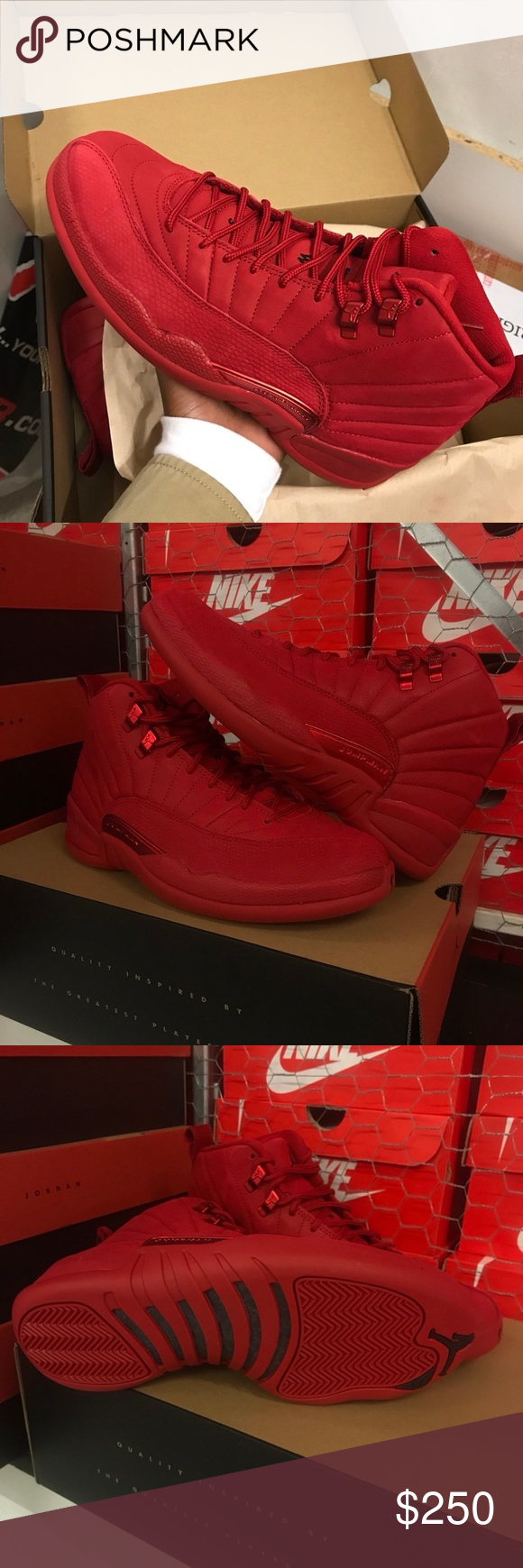 """b737bc5988f Air Jordan 12 """"Gym Red"""" Brand new just released Gym red Suede 12s Deadstock  in Jordan retro Box Receipt included Shoes Sneakers"""