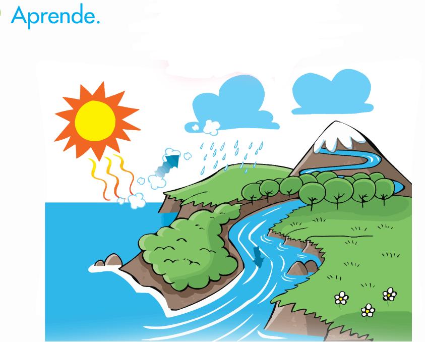 Dibujos Para Colorear Del Ciclo Del Agua Para Ninos: EL BLOG DE TERCERO: EL CICLO DEL AGUA
