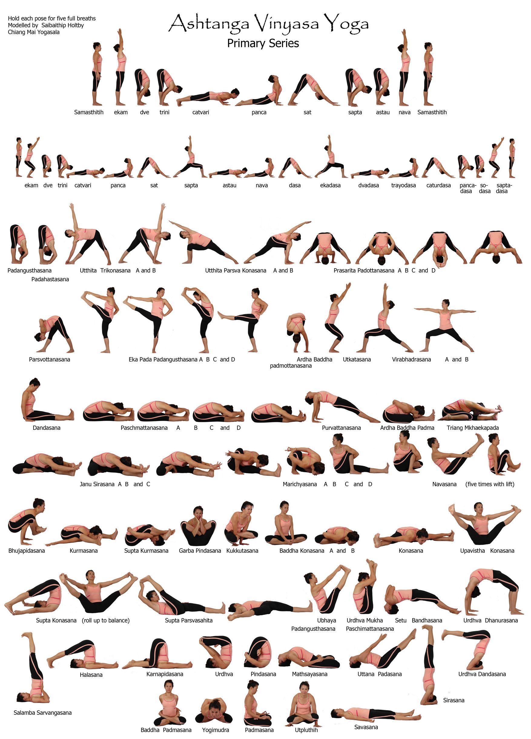 Primary Ashtanga Yoga Series Vinyasa Joga Ashtanga Vinyasa Joga Trenirovki Dlya Mam