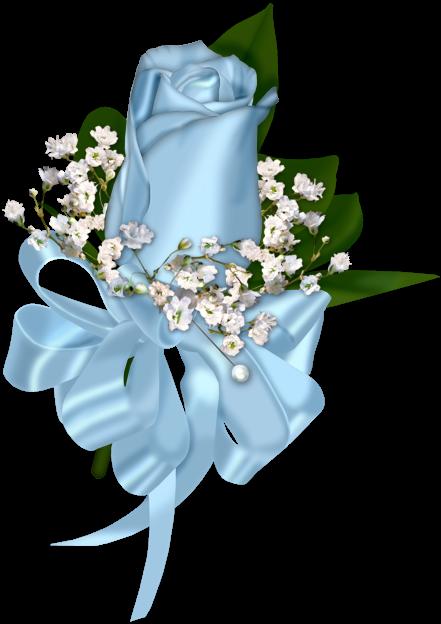 Light Blue Rose Decoration Transparent Clipart Light
