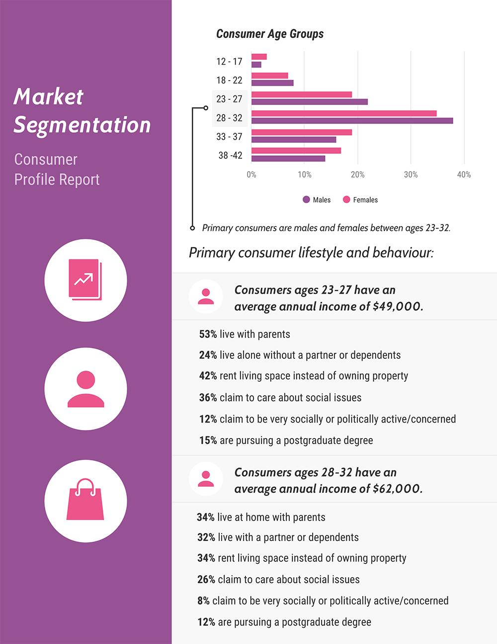 Market Segmentation Report Template Data Visualization