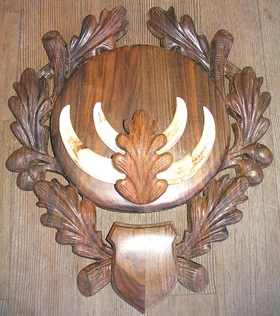 Mounted Boar Tusks #6 {FREE SHIPPING} | Wood bookends
