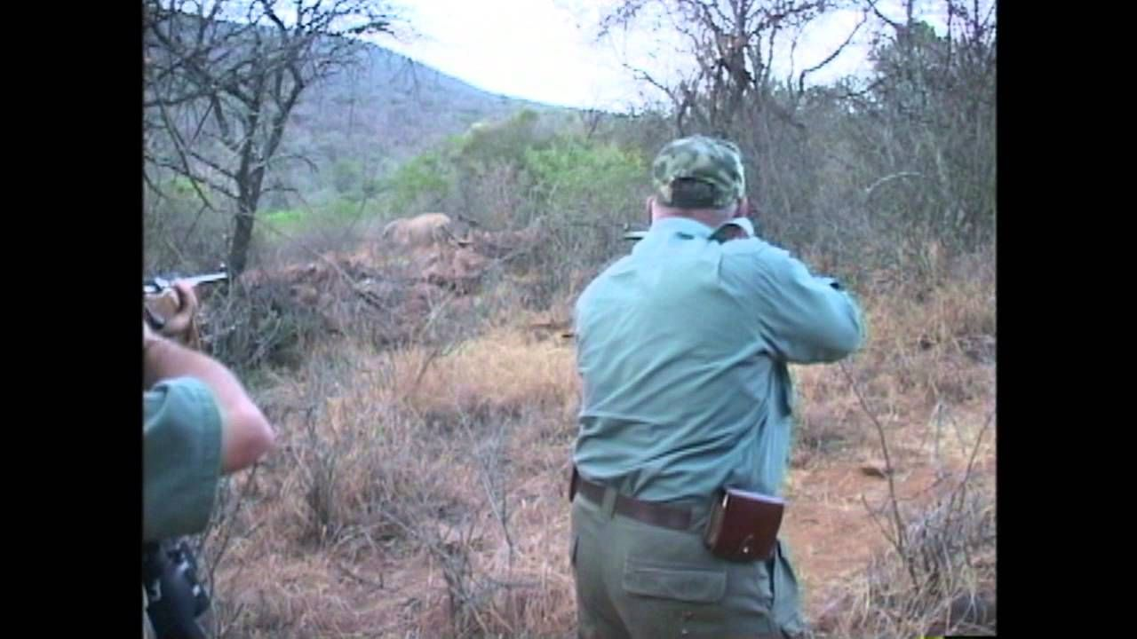 Exposing a Rhino Hunt BOYCOTT SOUTH AFRICA Hunting