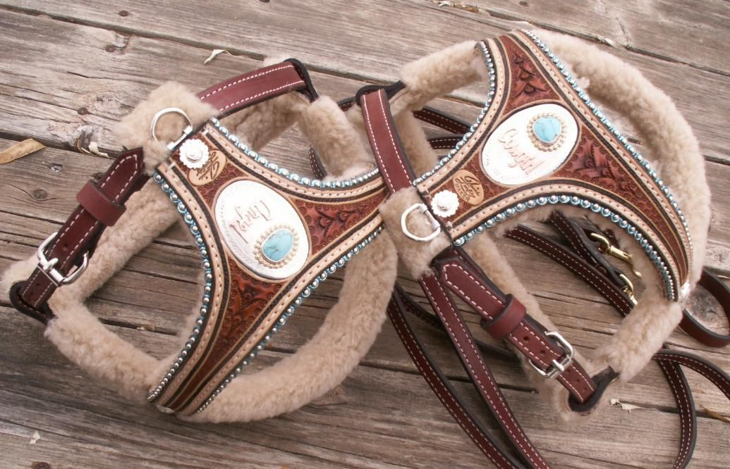 Stunning Leather Dog Harnesses From Master Craftsman Denice