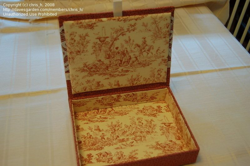 Ideas For Decorating Wooden Boxes Crafts Hobbies Still Need Cigar Box Ideas 1 By Chris H Wooden Box Crafts Fabric Decor Cigar Box