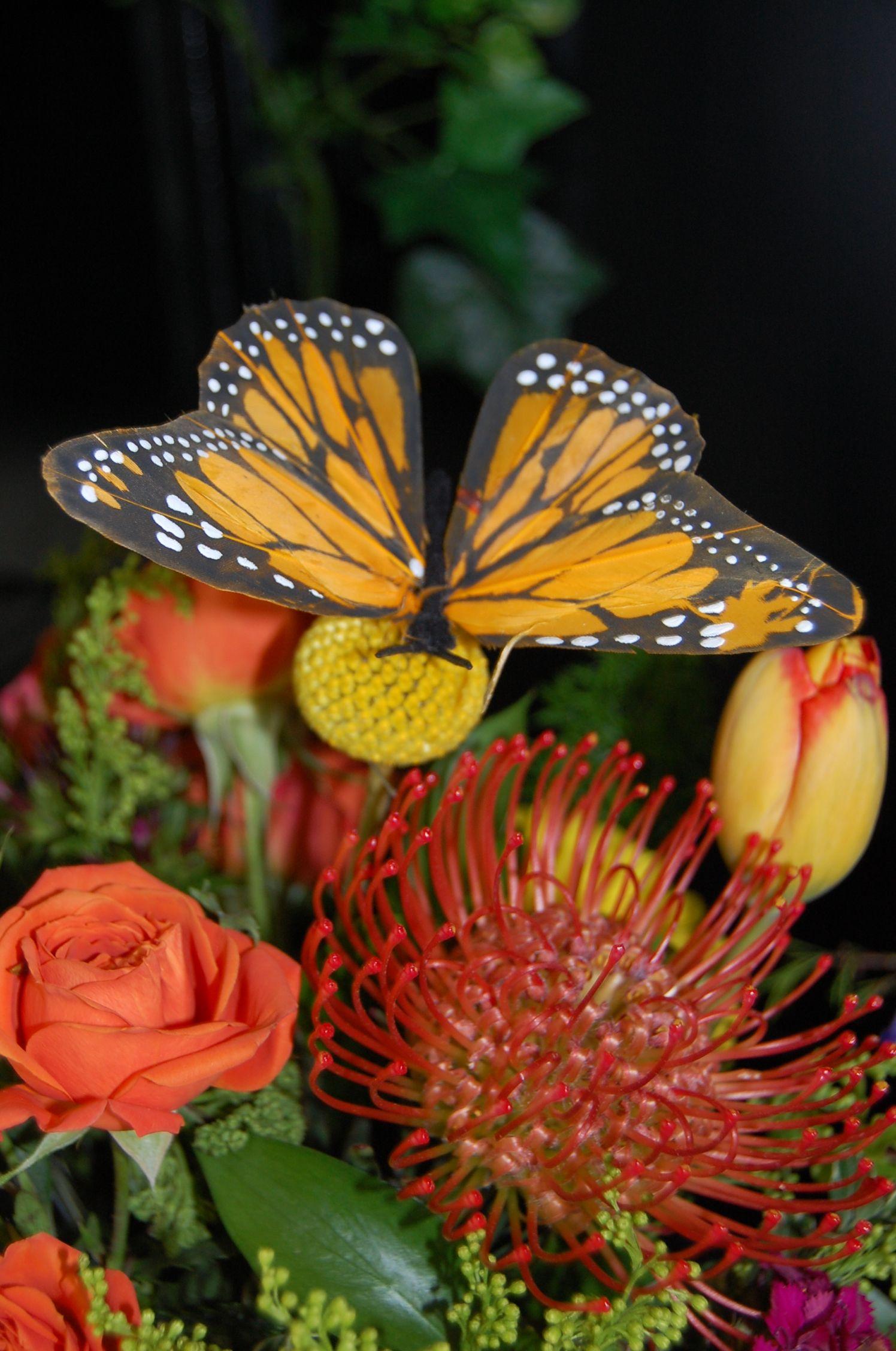 A taste of exotic Spring #flowers