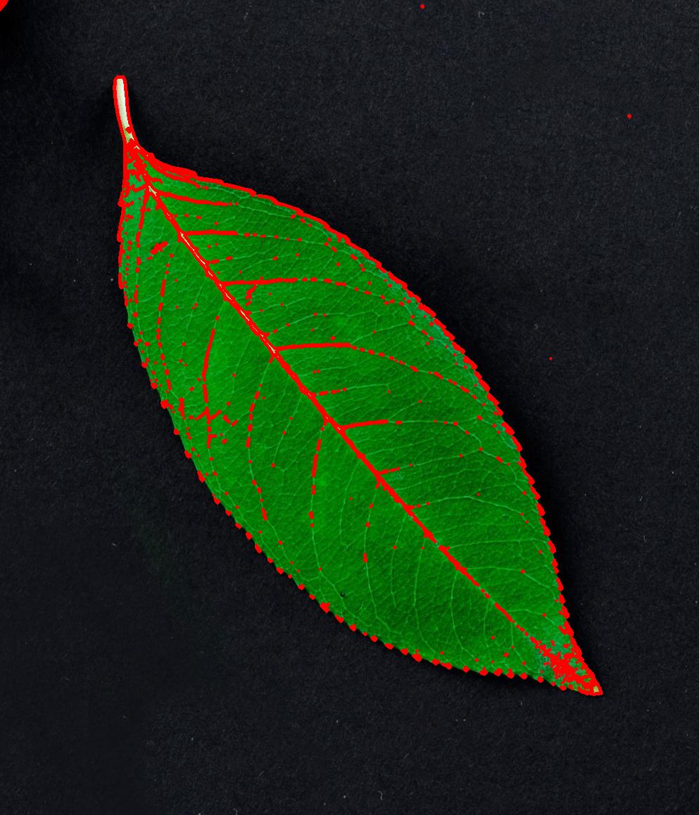 Object detection via color-based image segmentation using