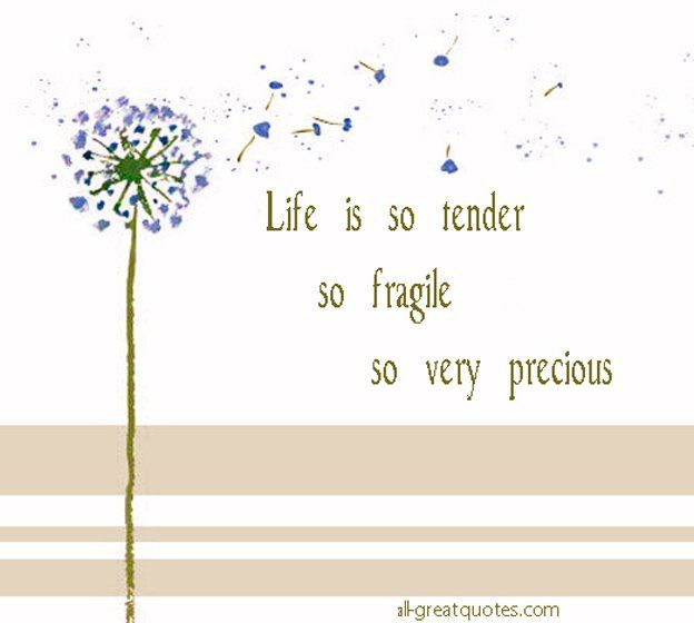 life fragile quotes Google Search Picture quotes