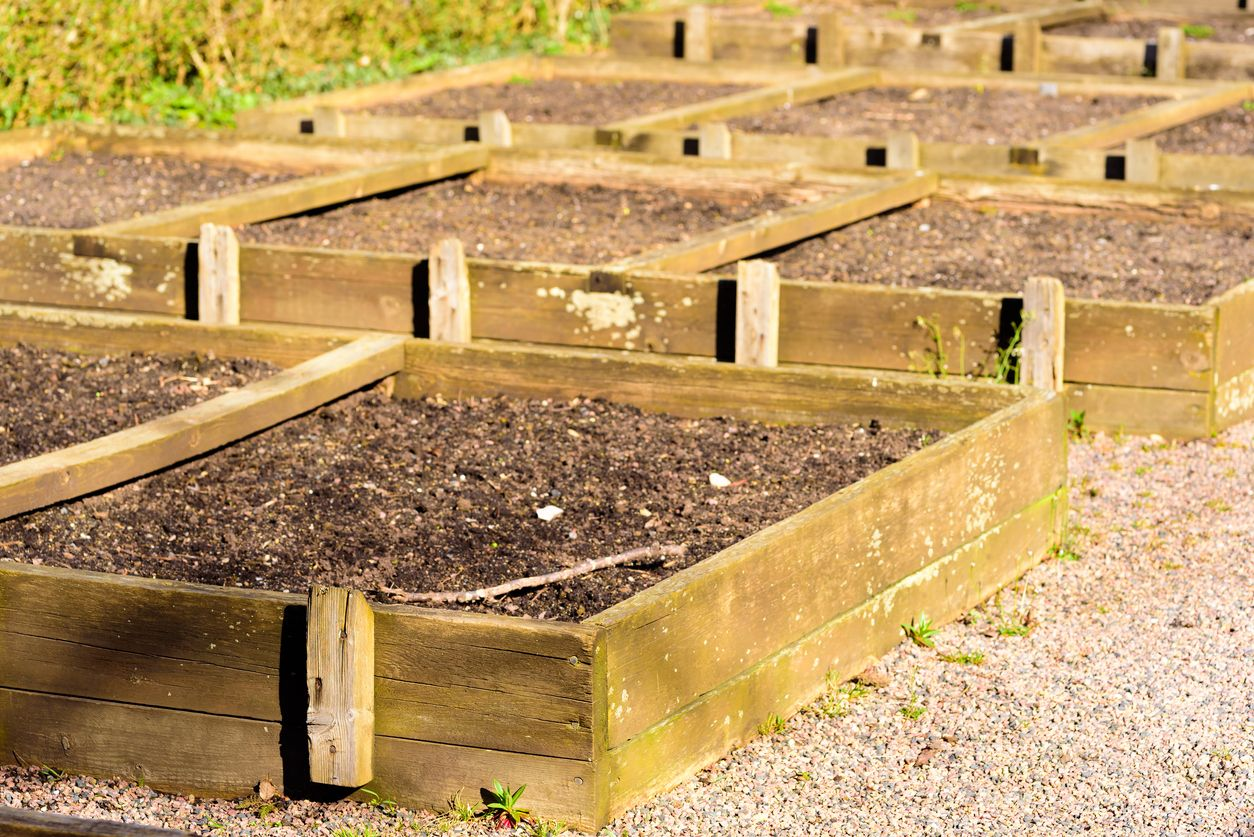 Raised Bed Soil Depth: How Much Soil Goes In A Raised Bed ...