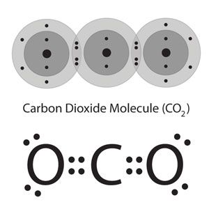 Bohr Diagram For Calcium Chloride Co2 Carbon Dioxide Molecule One Carbon Atom With Two