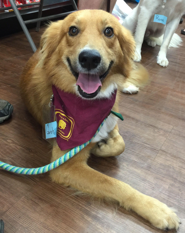 Garth has been adopted! 3 yrs. He has a fun, friendly