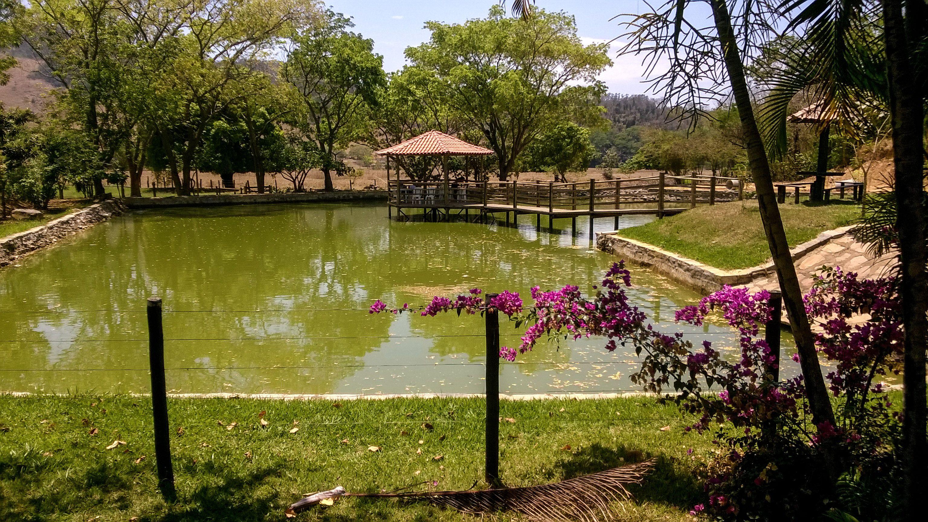 I love Minas Gerais