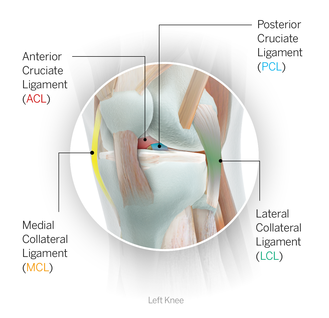 Sports injury glossary -- Everything you need to know, from head to ...