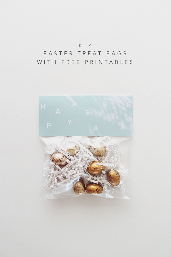 Diy easter treat bags free printables easter easter crafts diy easter treat bags free printables negle Image collections