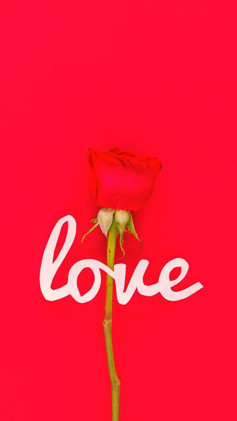 Love Pink Full Hd Android Mobile Wallpapers 1080x1920 Traxzee In 2021 Wallpaper 1080x1920 Red Rose Love Love Wallpaper Download