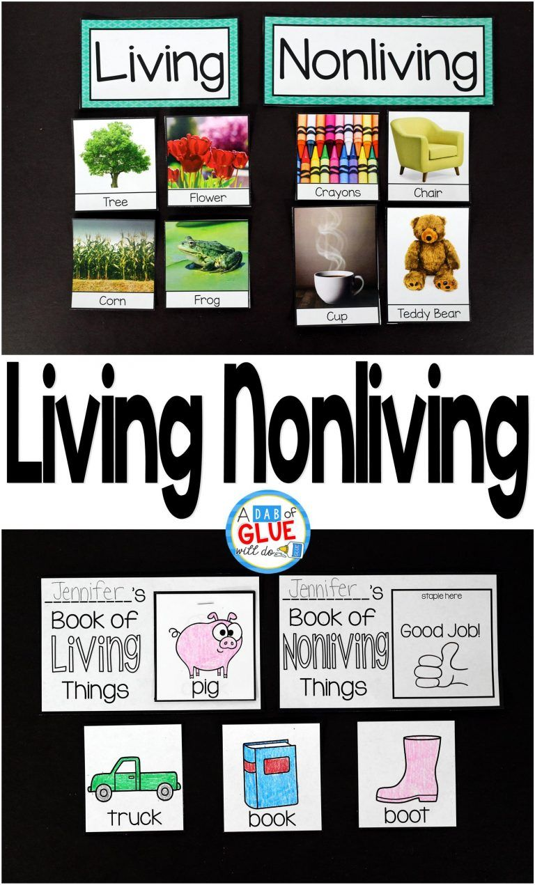 Living Nonliving Life Science Lessons Living And Nonliving Science Lessons [ 1271 x 768 Pixel ]