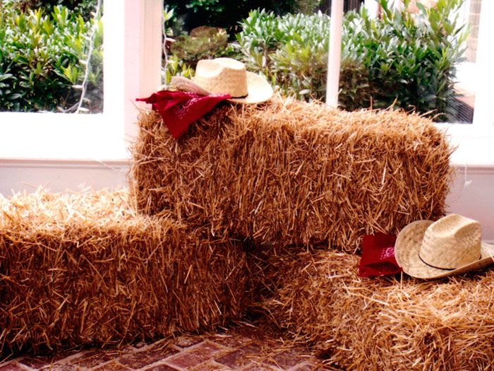 country party decorations - Country Decorations