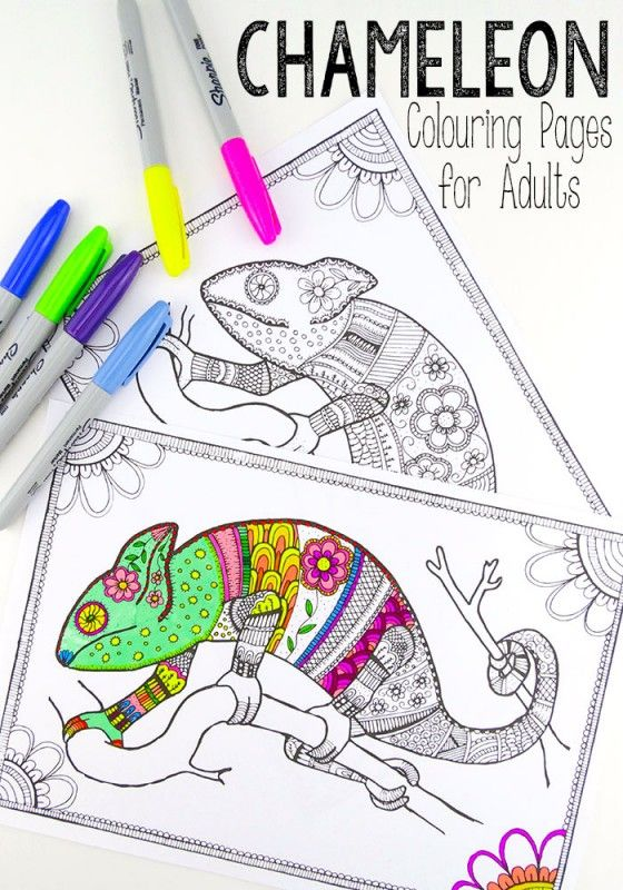 Colouring Pages for Grown Ups - Chameleons   Colorear, Para niños y ...
