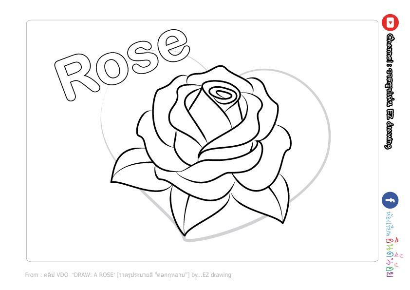Free A Rose Coloring Page Printable แจกภาพ ระบายส ดอกก หลาบ ดอกก หลาบ สอนวาดร ป ปากกา