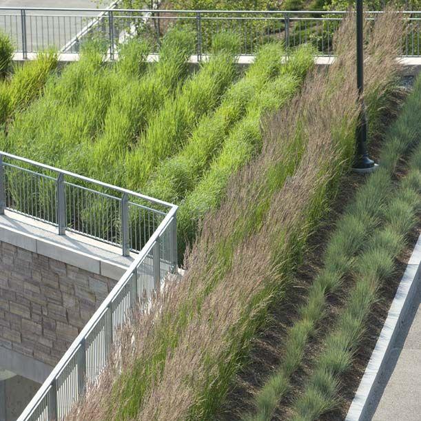 University Of Vermont Dudley H Davis Center Gold Leed Certification Landscape Archit Campus Landscape Architecture Campus Landscape Landscape Architecture