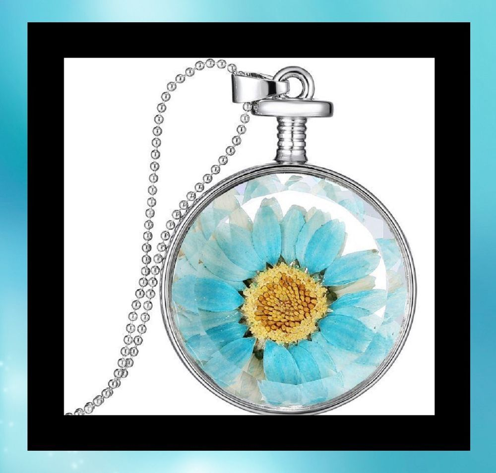 New dried flower encased in glass silver locket pendant long chain