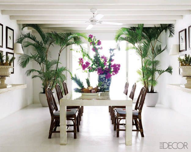 Sig Bergamin minimal tropical dining room--white walls and floors, exposed beams, greenery, chippendale chairs