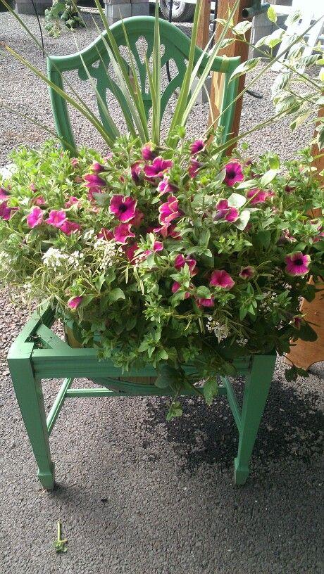 Chair flower pot.