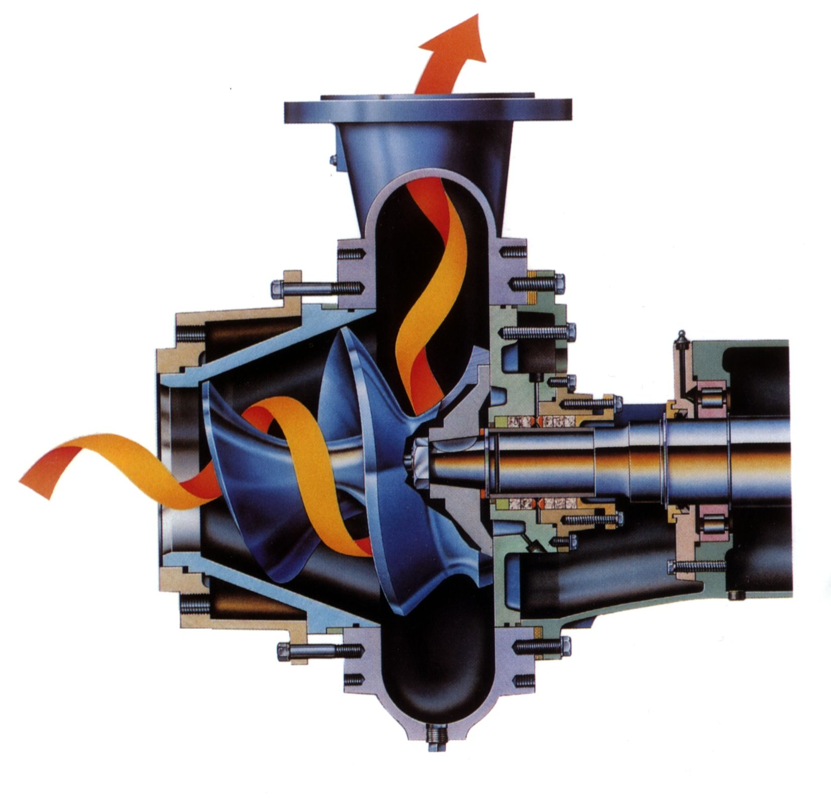 Cutaway of centrifugal pump (for viscous liquids