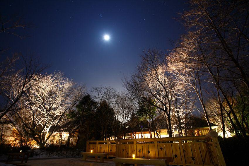 宮城県 蔵王 静かな離れで悠々とした休日を過ごす だいこんの花 宮城 温泉 ホテル 旅館