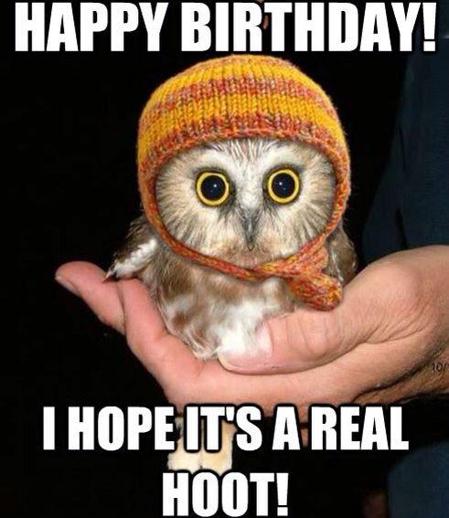 06ab10affc2aecb46518e2cec2c680cb birthday hoot happy birthday meme pinterest happy birthday