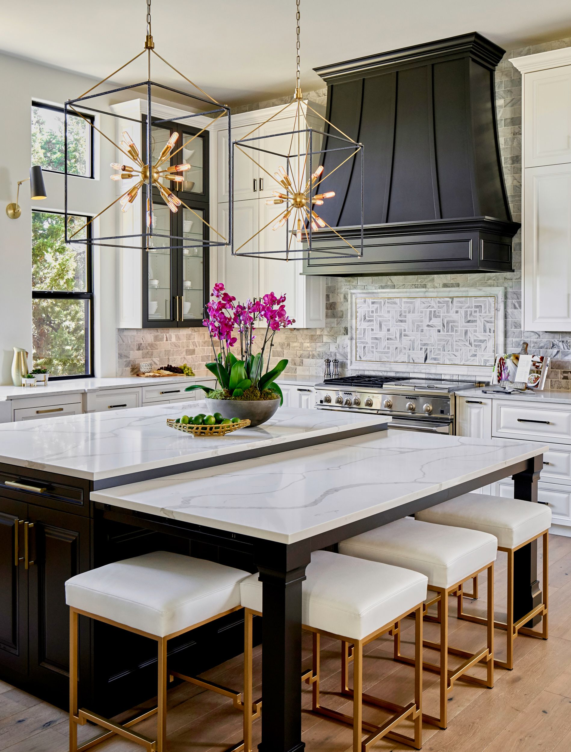 Black, White and Gold Transitional Kitchen with European