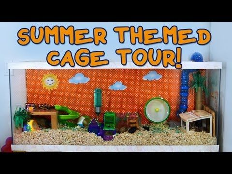 Summer Themed Hamster Cage Tour Hamster Cage Hamster Pet Rodents