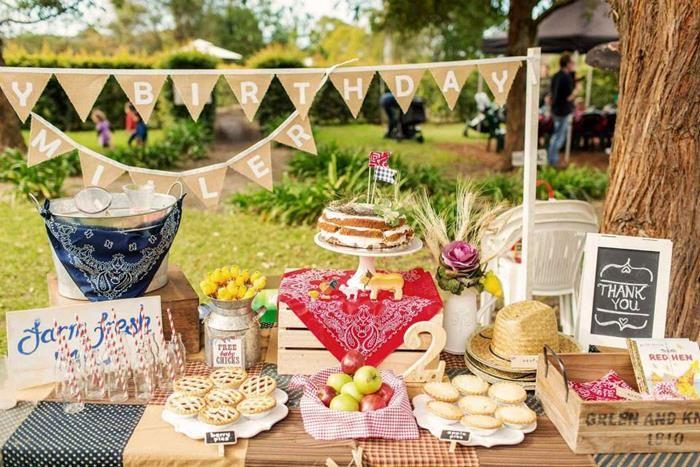 Farm Birthday Party Planning Ideas Supplies Cake Barnyard