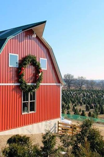 More Than a Christmas Tree | Christmas tree farm, Bonfires and ...