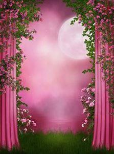 اجمل صور خلفيات شاشة من الطبيعة صور خلفيات Hd من الطبيعة صور طبيعه و مناظ Photography Studio Background Pink Roses Background Flower Background Wallpaper