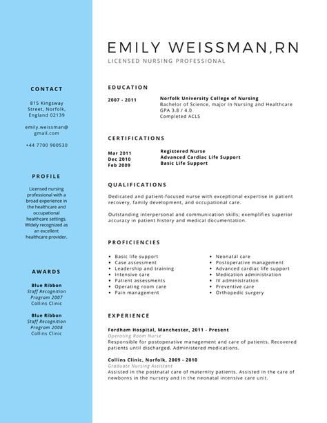 Professional Licensed Nurse Resume Canva DIY Pinterest