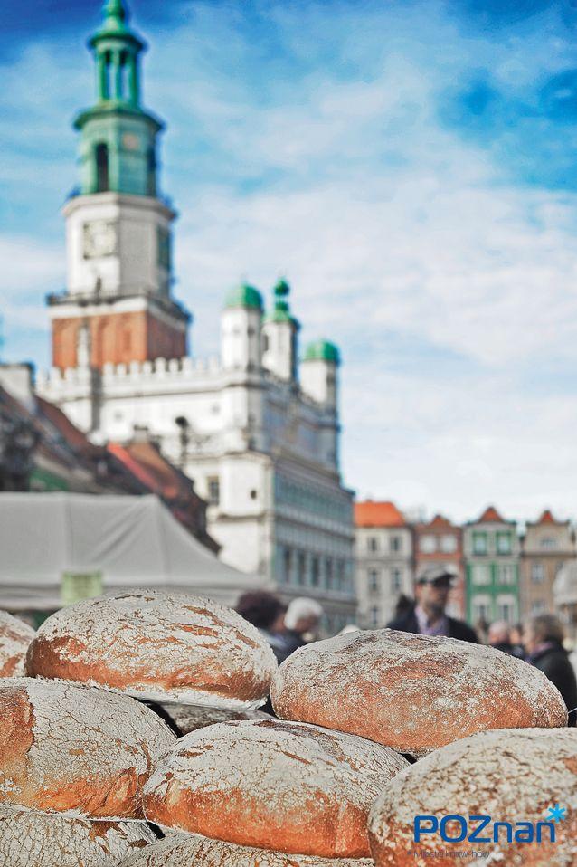Poznan Poland [fot. R. Woźniak]