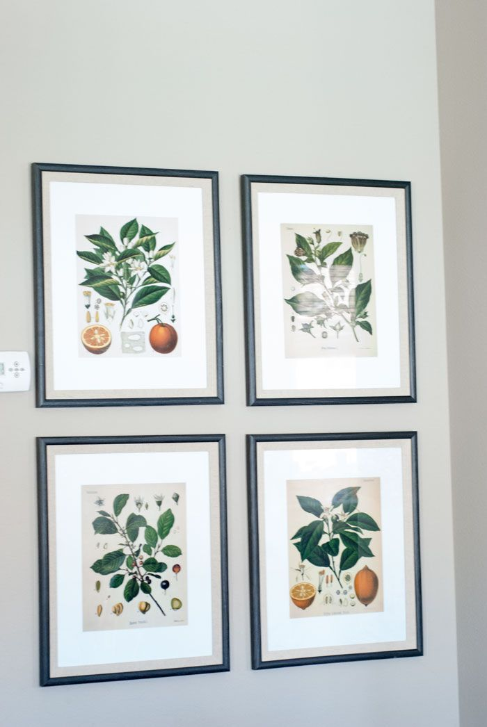DIY Fixer Upper Inspired Botanical Prints with Free Printables in