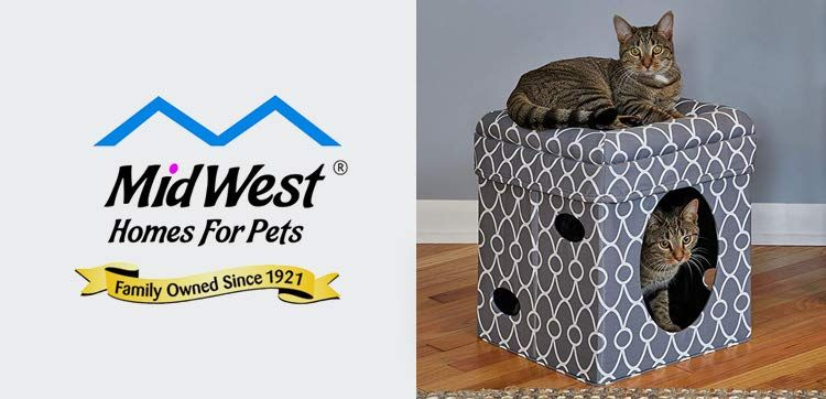 Amazon Com Pet Supplies In 2020 Pets Pet Supplies Family Pet