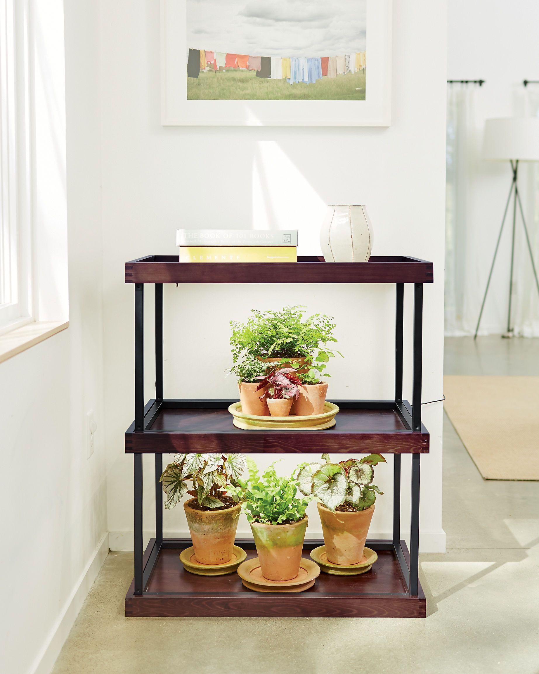 Small Table Top Grow Light with T5 Bulbs