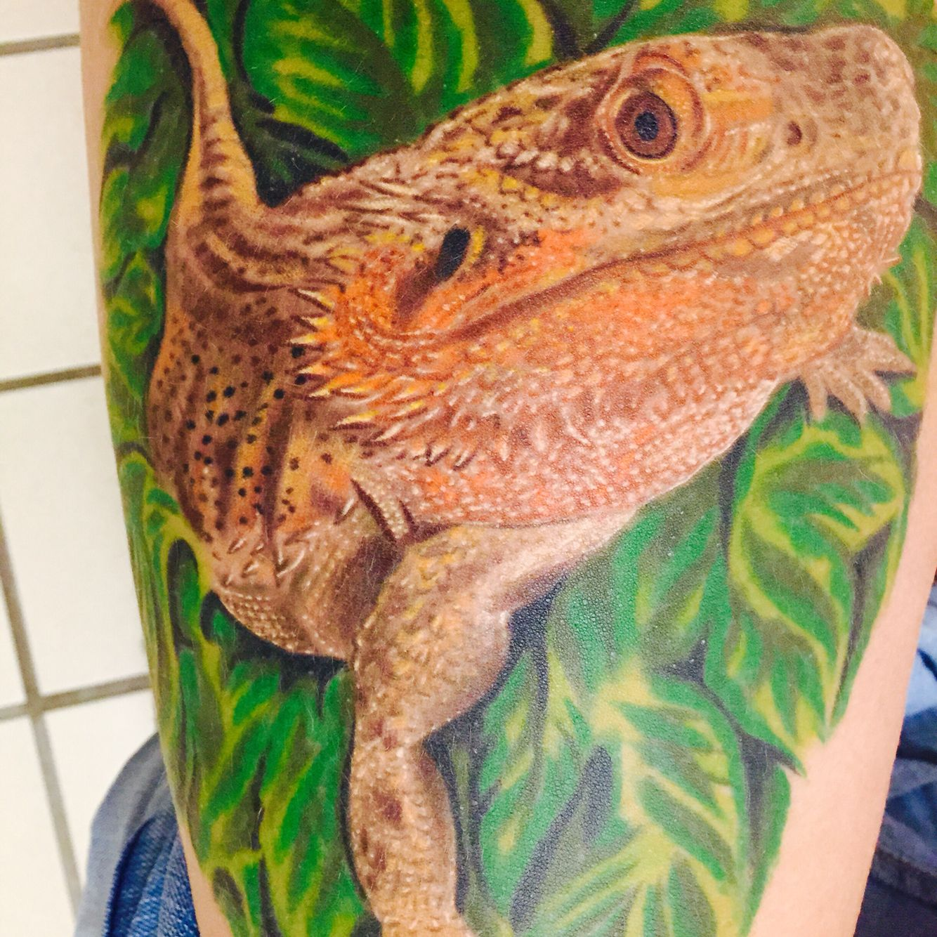 tattoo of my bearded dragon done by daniel chashoudian at md tattoo in north ridge california. Black Bedroom Furniture Sets. Home Design Ideas