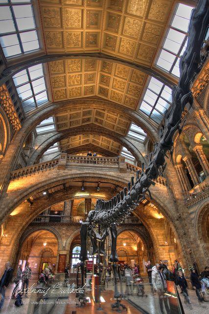 Natural History Museum London Natural History Museum London London Places Natural History