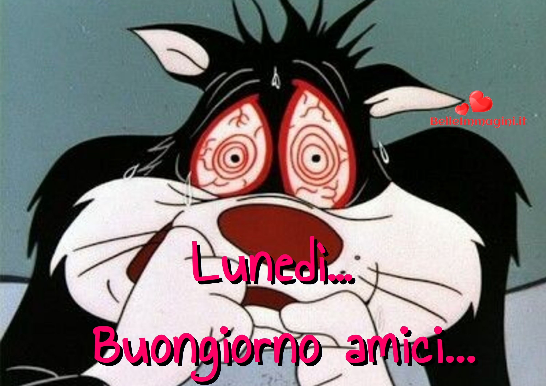 Buon inizio settimana buongiorno luned immagini per whatsapp immagini divertenti buon for Buon lunedi whatsapp